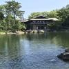 緊急事態宣言解除後、久しぶりの徳川園散策