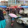 首都ラパスの週末限定「ロドリゲス市場」で見つけたもの。(ラパス・ボリビア