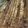 佐久の地質調査物語(瀬林層-5)