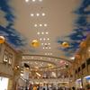 トレッサ横浜  (神奈川県内でも有数の大型ショッピングモール)