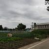 渡柳弥五郎清忠館跡(埼玉県行田市)