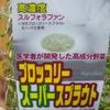 ブロッコリースーパースプラウトの味が苦い?美味しいサラダレシピ試してみて