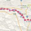 第8回 東尋坊愛のマラニック(52kmの部)_完走記①