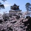 金沢城のさくら2018