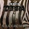 第58回「Zebra」(2)