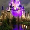 激すきのディズニーランドへ!~滞在時間約2時間半で「東京ディズニーランド・エレクトリカルパレード・ドリームライツ」と「ミッキーパン」を楽しむ!!~