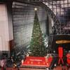 京都駅ビルにはクリスマスツリー