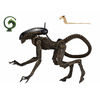 【エイリアン3】アルティメット 7インチ『ドッグエイリアン』可動フィギュア【ネカ】より2019年10月発売予定♪
