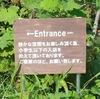 小学生以下は入場不可、店内撮影禁止!軽井沢のauraは贅沢時間を堪能できる絶景カフェだった!