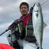 【番外編】七里御浜で青物を釣るためには変化を探れ?