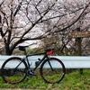 ロードバイク - 朝ソロ外練