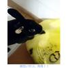 黒 × 黄色 = 混ぜるな危険!!