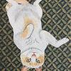 科学的に証明された猫の癒し効果!【ペット】と【アート】でストレスフリーの生活を