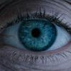 『エイリアン: コヴナント』の様々な予告編バリエーション、『エイリアン』風とか『プロメテウス』風とか。