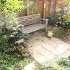 11月はじめの庭と、家の中の小さな動物たち