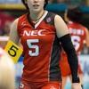 【女子バレーボール】2018年日本の美人な現役選手15選