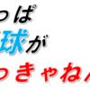 2020日本シリーズと埼玉西武ライオンズを振り返る その1