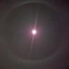 月の輪(白虹) アイボとラッシーの月命日