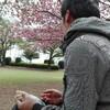 八重桜の下でおにぎりホッコリ