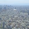 【写真複製・写真修復の専門店】東京 スカイツリーからの眺め