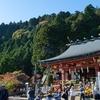 神奈川県・大山で色づき始めの紅葉を見てきた