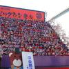 2017年2月 勝浦旅行1泊2日② ビッグひな祭りのお雛様は圧巻!干物もお得感満載でした♪