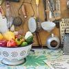 切り干し大根のアレンジレシピが美味しい!一品で栄養バランスが取れるおススメレシピ本