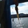 夏休み2日目 京浜運河