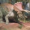 恐竜研究所、ミュージアムパーク茨城県自然博物館!恐竜を見るならココ!