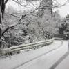 雪かきオリンピック