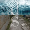 横川理彦 /  Dive/Solecism