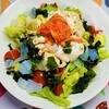 食べて元気を出す。食欲がない時でも食べやすいサラダうどんの作り方。