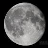 立待月(月齢15.988)