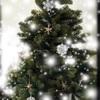 クリスマスプレゼント  誰から何を貰ったか忘れてしまう…認知症