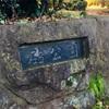 「ポケモンの巣:砧公園」の回