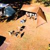 秋の紅葉キャンプ@和泉前坂家族旅行村 前坂キャンプ場