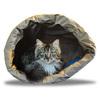 猫は紙袋が好き?
