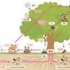 【生態系を注視せよ】経営の為のワークアウト・其の3