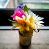 春のイノチ