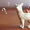 よくある質問その3「年齢制限ってある?」