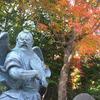 この秋、2度目の高尾山。紅葉よりもおしゃべりに夢中…