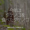 942食目「今年はタケノコを食べたダケノコ」実家からタケノコが届きました