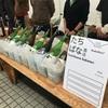 日本酒のフェステイバル