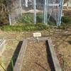 園丁師の方々とのお話と岡山の自然を守る会