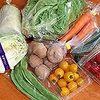 JA全農あおもりさんキャンペーン 当選品 野菜セット