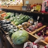 岡山県産の美味しい野菜🥬きゅうりも🥒❗️