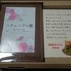 【年賀状】挨拶状ドットコムで注文していた年賀状が到着、きずなばこ(収納ケース)のサイズが変わっていました!!