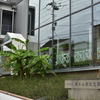空也最中が食べれる新宿区立漱石山房記念館へ
