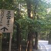その7熊野詣で!中辺路歩き(大雲取越え・小雲取越え)の記録(伊勢へ)