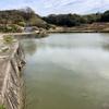 葛原池(兵庫県淡路)